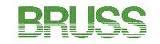 Logo - (Deutsch) BRUSS